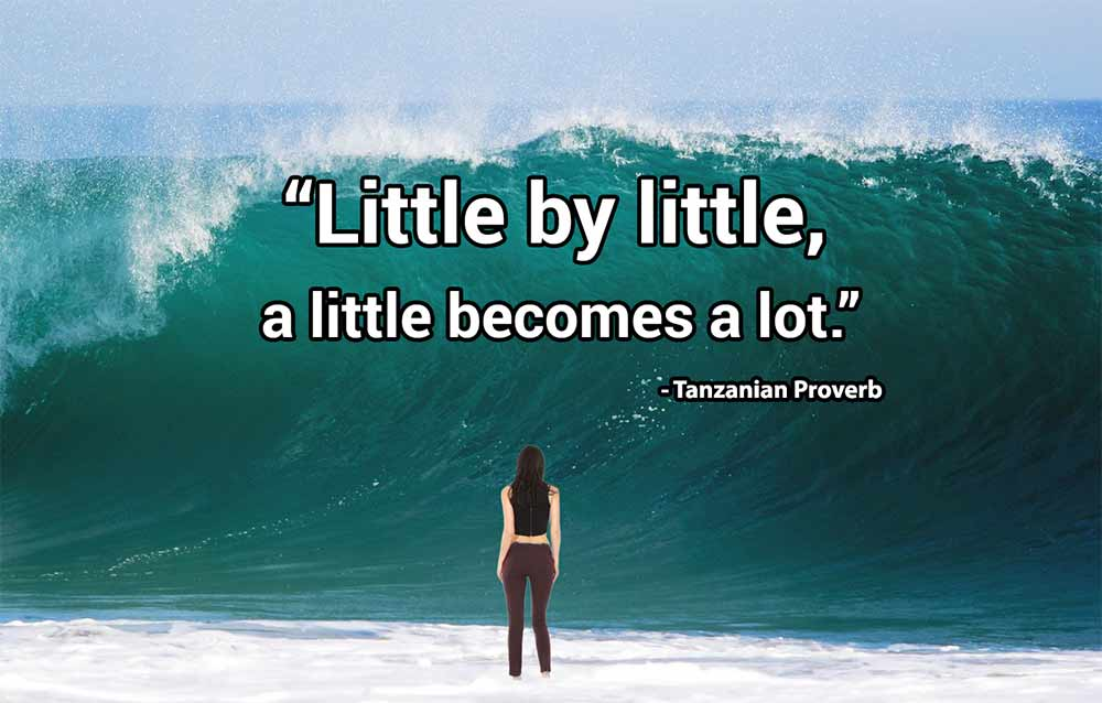 """""""Little by little, a lot becomes a lot"""" - Tasmanian proverb"""