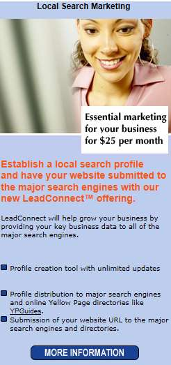 WalMart Local Search Marketing Service Ad